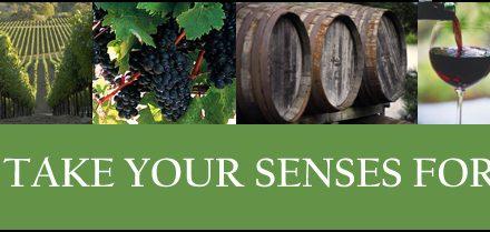 Wineries of Highway 46 East