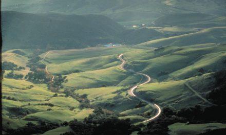 San Luis Obispo Wine Trail