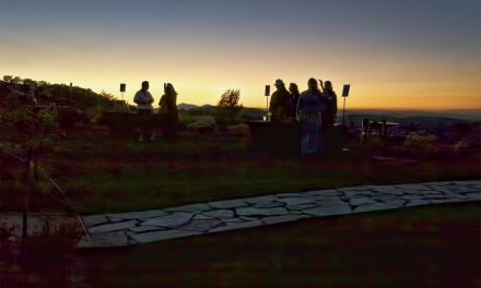 2014 Wine Bloggers Conference – Paso Robles Excursion