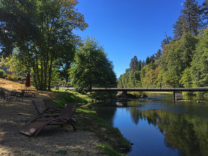 Scenery at Red Lily Winery alongside the Rogue River