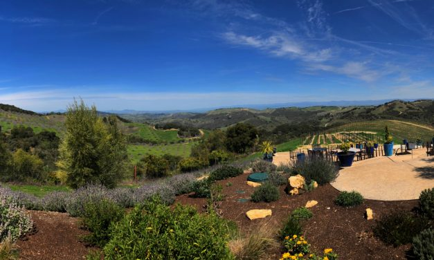 Focus on Paso Robles – Eye Candy