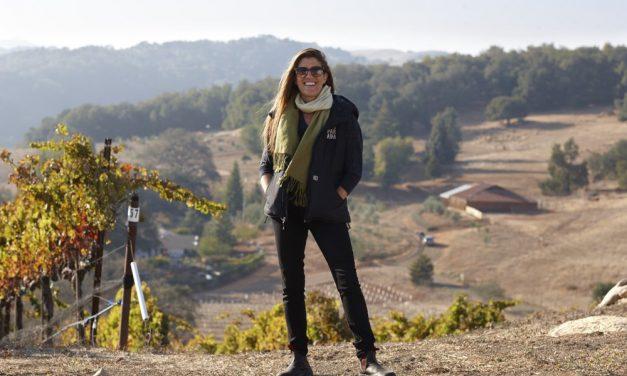 2017 Desparada Fragment Sauvignon Blanc – Again