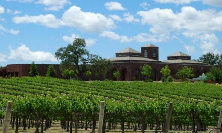 Robert Hall – Tour, Winery, Caverns, and Tasting