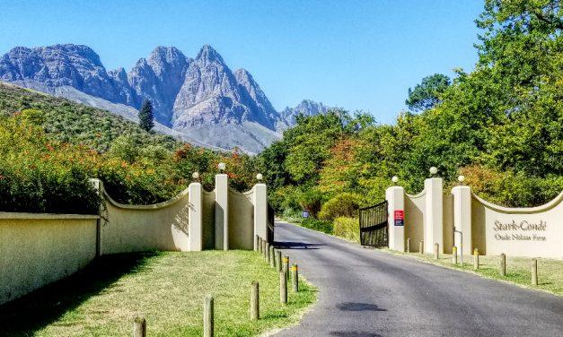 Honeymoon, Africa, Cape Town, and Wine! (Part Four – Stark-Condé and Tokara)