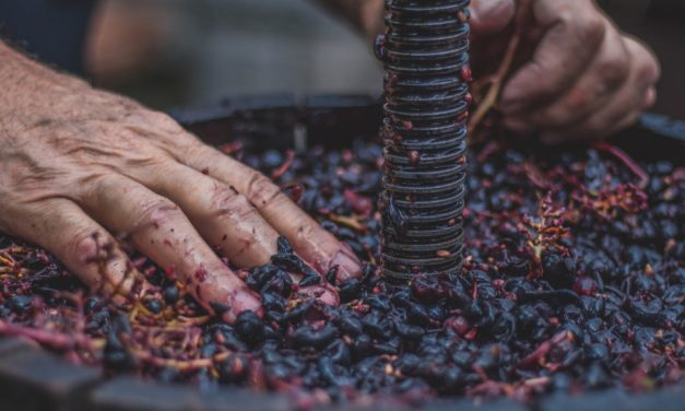 The Peculiarity of Wine