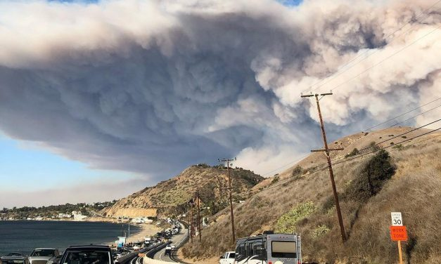 Malibu Coast AVA and the Woolsey Fire